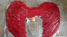 Крылья ангела красные