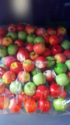 Набор декоративных яблок