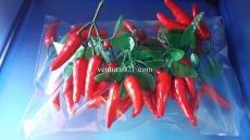 Декоративная веточка красного перца чили