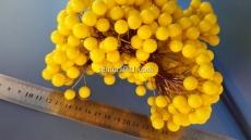 Ягода жёлтого на проволоке