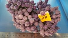 Ягода сахарная фиолетовая на проволоке