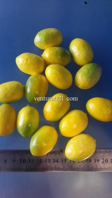 "Декоративная фрукта ""Лимон"""