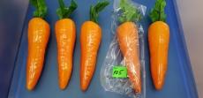 """Овощи большие """"Морковь"""""""