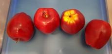"""Фрукты большие """"Яблоко красное"""""""
